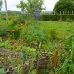 Le potager fleuri du jardin