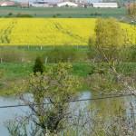 Vue sur la ferme de la Pouillotte à Bonzée