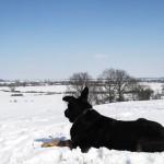 Les côtes de Meuse sous la neige
