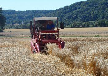 Passionés d'Agriculture , des propositions